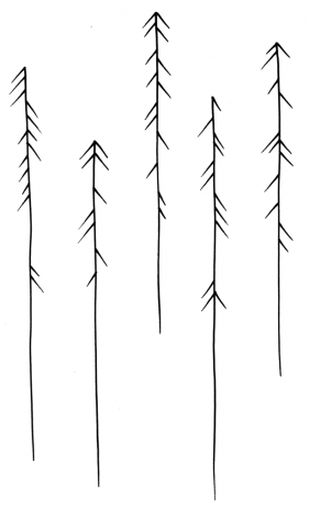 Arrows / Trees 1