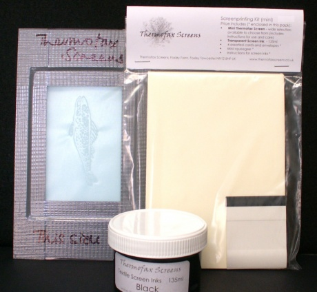 Mini screen printing kit