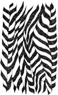 Zebra Stripes 1